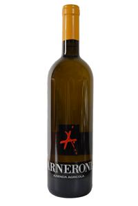 Manzoni bianco 6.0.13 agriturismo arneroni azienda agricola vino